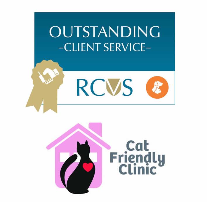 rcvs awards