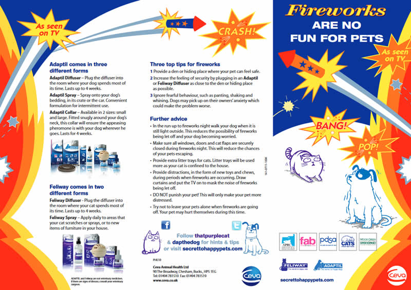 fireworks leaflet