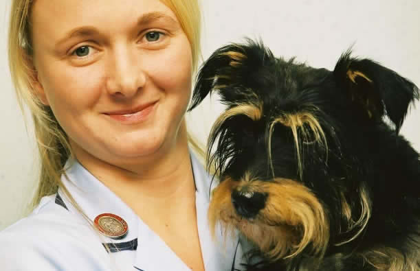 nurse and dog