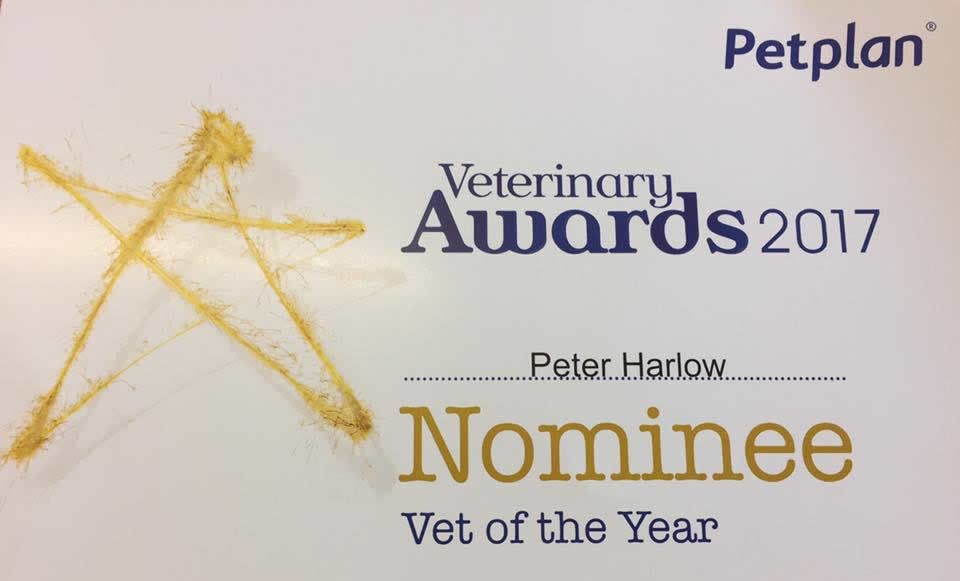 pet plan awards