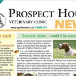 Summer newsletter prospect house vets