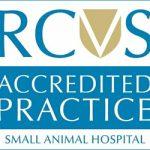 RCVS accreditation Prospect house vets