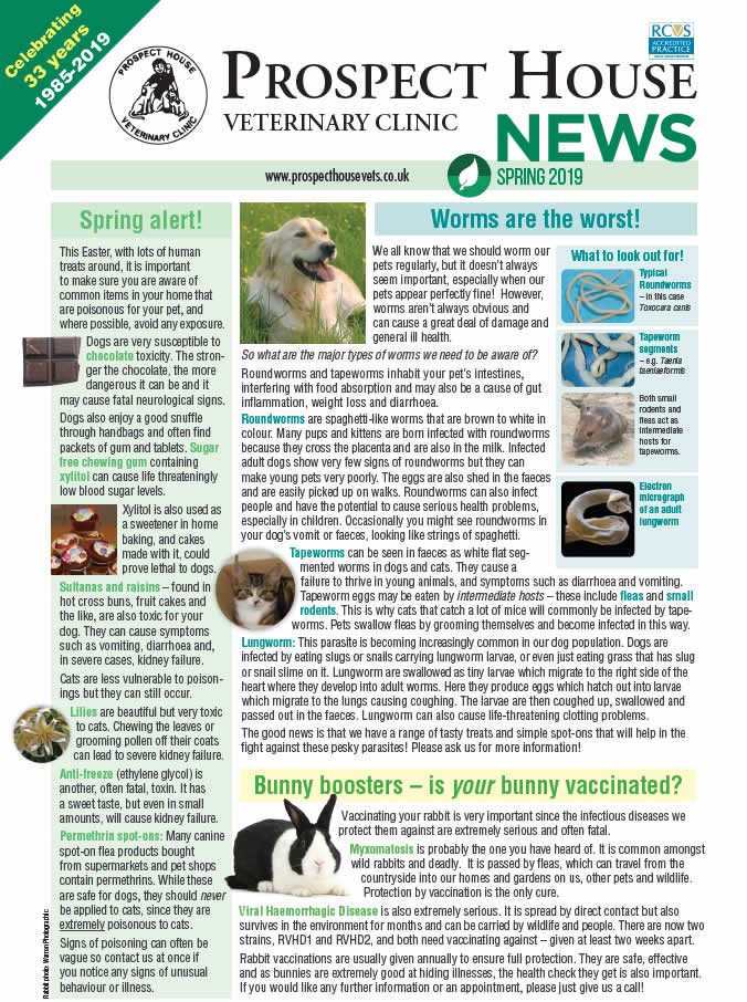 Prospect House vets newsletter