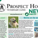 prospect house newsletter