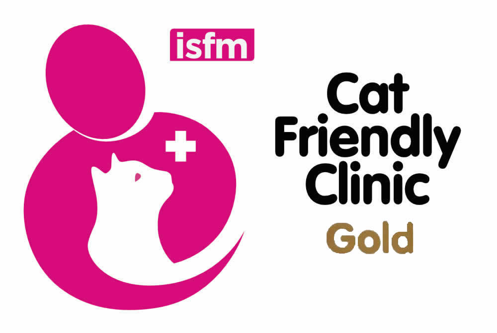 Prospect House Vets achieves Gold Cat Award