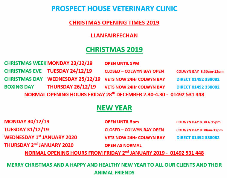 Christmas Opening Times Prospect House Vets Llanfairfechan