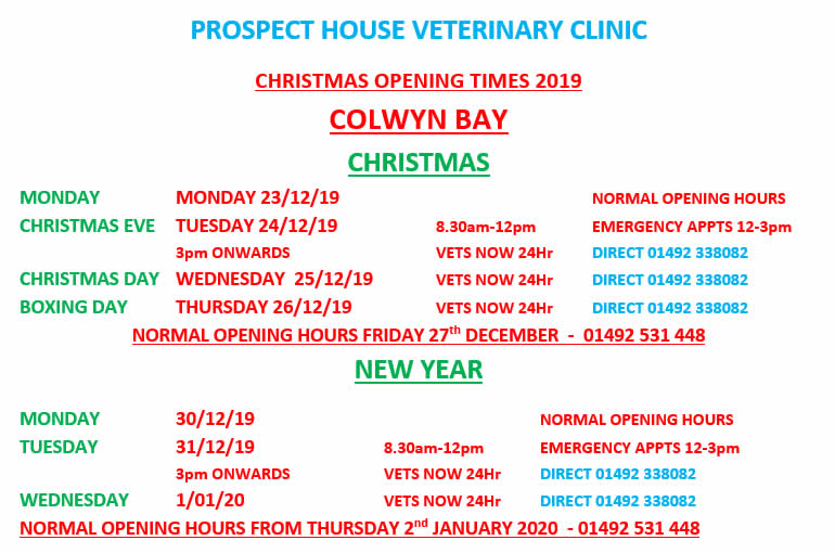 Christmas Opening Times Prospect House Vets Colwyn Bay